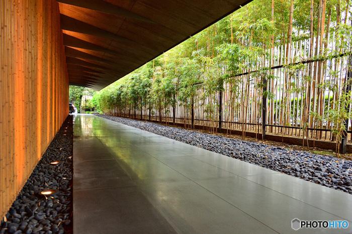 表参道駅から歩いて約10分。都心とは思えないほど緑豊かで静かな美術館です。写真は、本館のエントランス部分。2009年に著名な建築家・隈研吾氏によって新創された建物で、竹や玉砂利が和風家屋や寺院のよう。エントランスのこの雰囲気だけで、中がどんな風になっているかわくわくしますよね。  根津美術館に所蔵されているのは、日本・東洋の古美術。絵画や彫刻など国宝も展示されているので見ごたえがありますよ。