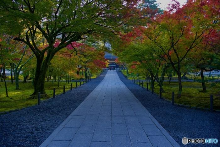 南禅寺から哲学の道を歩き銀閣寺を目指すコースは、京都観光の王道。そんな南禅寺の三門から見る紅葉は、まさに絶景です。