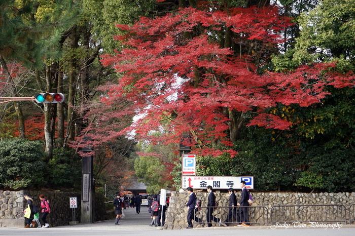 室町幕府の3代目将軍として栄華を極めた足利義満によって開基された鹿苑寺(金閣寺)は、1397年に創建された臨済宗の寺院です。日本を代表する観光スポットとしても知られており、鹿苑寺では年間を通じて日本国内外からやってきた大勢の参拝者で賑わっています。