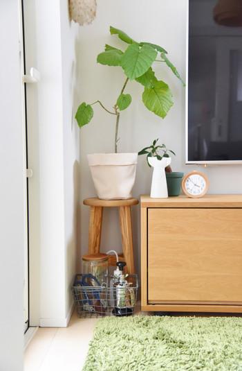 ナチュラルな布鉢はグリーンとの相性ばっちり。軽くてお手軽なので、大きいグリーンは圧迫感があってちょっと…という方におすすめ。陶器の鉢よりもカジュアルに・軽やかに見せてくれますね。