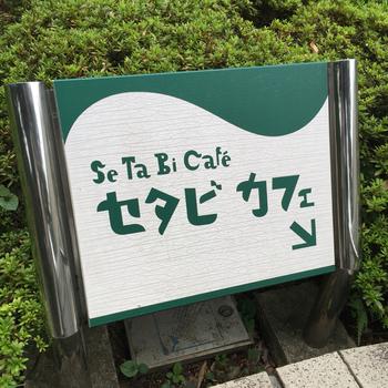 可愛らしい書体が目を惹く「セタビカフェ」。美術館の通称名「世田美」に由来しています。