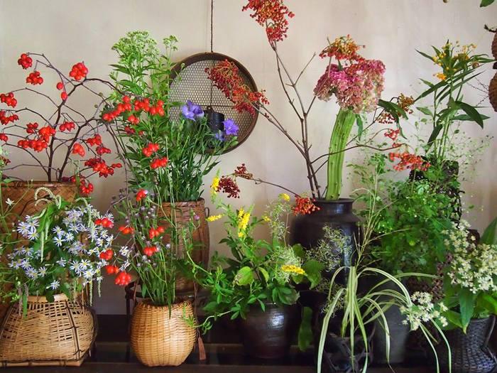 自然そのままの美しい草花や花木が並ぶ店内は、まるで野山をそっくり運んできたよう。店名にもなっている「見立て」という、日本人の美意識が生み出した文化や感覚を大切にしながら、植物で表現できる新しい価値観を伝えています。