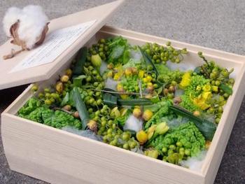 6寸の箱に入った「雪中花」。雪の中で健気に咲く花たちの、小さな坪庭のよう。