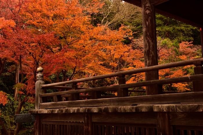 古びた木の質感と紅葉は、趣ある古都の風情を感じますね。
