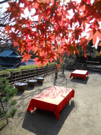 円覚寺では「佛日庵」や「安寧 」で、お抹茶を頂きながら休憩できますよ。