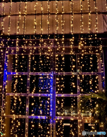 電球色のイルミネーションは暖かみがある光が特徴。窓辺に輝く雪のような灯りに癒されます。広く大きな窓にナイアガラライトが便利。