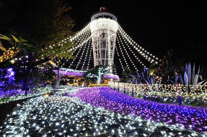 LED電球によって美しく装飾を施された江の島シーキャンドルと、光り輝く大地が織りなす景色は絶景そのものです。
