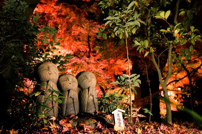 鎌倉大仏と並んで人気なのが「長谷寺」。ほっこり可愛らしいお地蔵さんがたくさん。眺めているだけで優しい気持ちになっていきます。