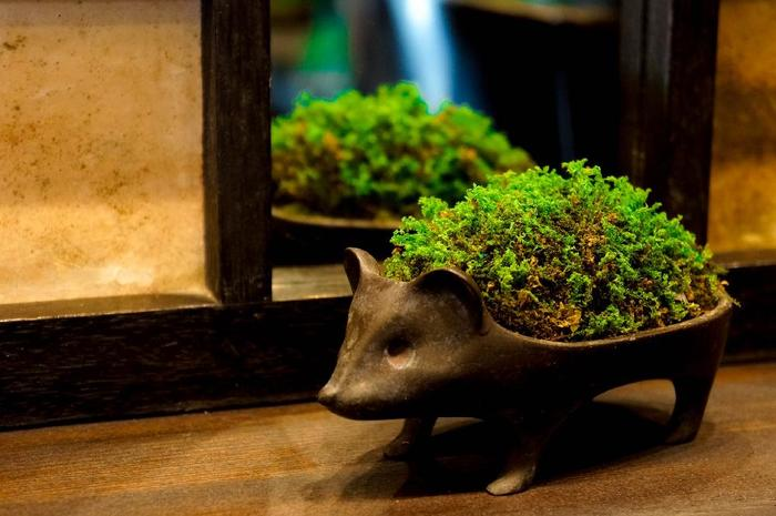 """苔盆栽をハリネズミくんの器にあつらえて。""""小さきものは美しきかな""""、という日本的な美意識を感じるアレンジ。"""
