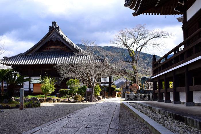 聖徳太子誕生の地とされている「橘寺(たちばなでら)」。日本書紀にも登場するお寺です。