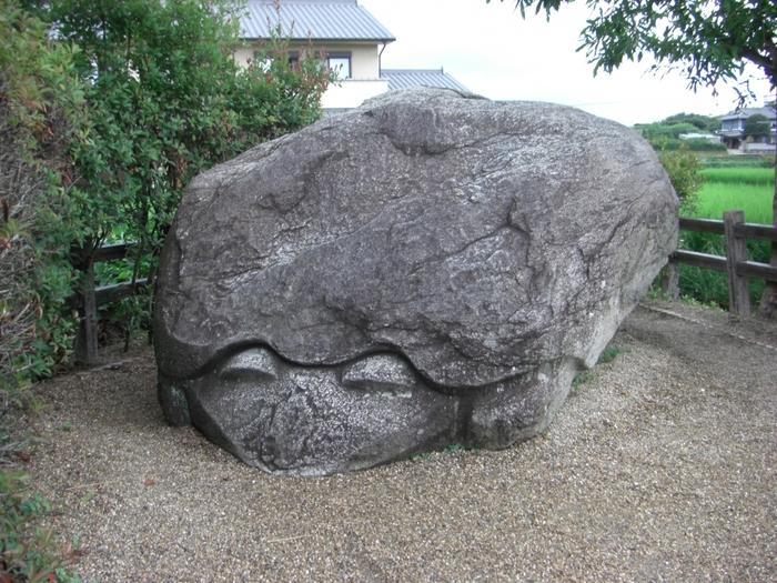 明日香村にたくさん残っているのが、不思議な形の石造物「奇石」。 こちらはまるで亀のような形の「亀石」。花崗岩でできていますが、何の目的で作られたかは明らかになっていません。 今は南西を向いていますが、西を向いたときには大洪水が起こるという伝説があるんだとか。