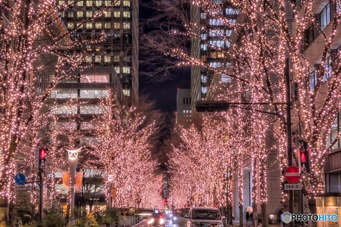 日本夜景遺産に登録されている丸の内イルミネーションでは、約1.2キロメートル続く丸の内仲通りの街路樹が煌びやかに輝きます。自宅への帰路の途中、少しだけ寄り道して、約93万球のLED電球と街路樹が織りなす魅惑的な空間に足を踏み入れてみませんか。