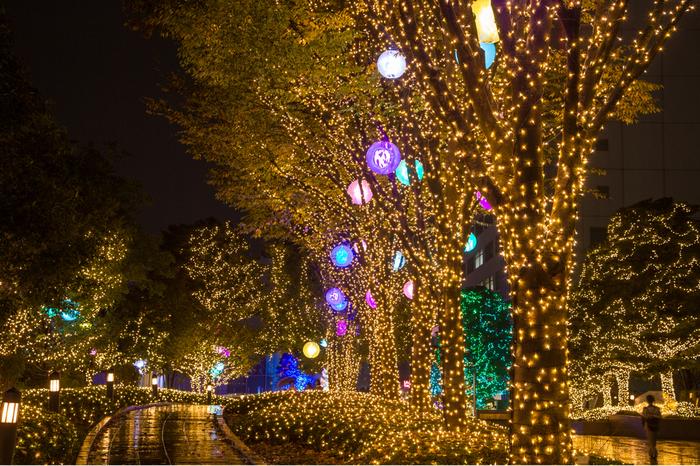 新宿ミナミルミは、JR、小田急、京王、都営地下鉄新宿駅などの南側に現れる壮麗なイルミネーションです。特に、やさしい灯りで彩られた新宿サザンテラスでのイルミネーションの美しさは傑出しています。