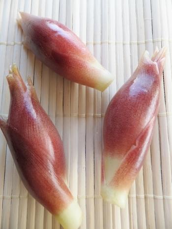 みょうがは高知県で多くハウス栽培されていることもあり、一年中手に入るイメージですが、実は6月~10月が旬。 その中でも夏にとれるものは「夏みょうが」、秋に取れるものは「秋みょうが」と呼ばれています。秋みょうがの方が、ふっくら丸みがあり大きいのが特徴です。
