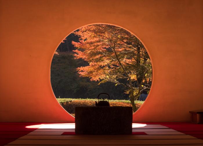 あじさい寺として有名な「明月院」。秋は紅葉も美しく四季を通して美しい自然が楽しめる場所です。自然を慈しみ心穏やかにする場所としてもおすすめです。