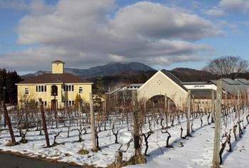 冬には雪の中での農園体験として、不要な枝を切り落とす、ぶどうの枝の剪剃も行われます。翌年のワインぶどうの出来具合の成否に関わるため、春までには必ず終えなくてはならない、とても大切な作業です。 画像はある年の12月の風景。積雪の多寡によっても剪定の状況が変わります。
