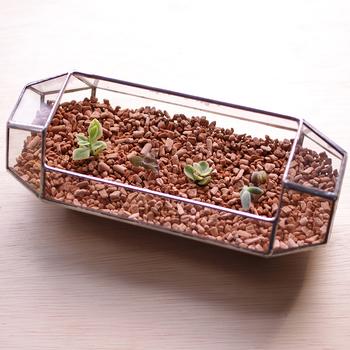 専用の液体肥料とインジケーターも一緒に使用することで植物の管理が苦手な方でもわかりやすく栽培を楽しむことができます。洗って何度でも使用できる点もいいですね。  ※こちらの画像では、多肉植物を植えています。