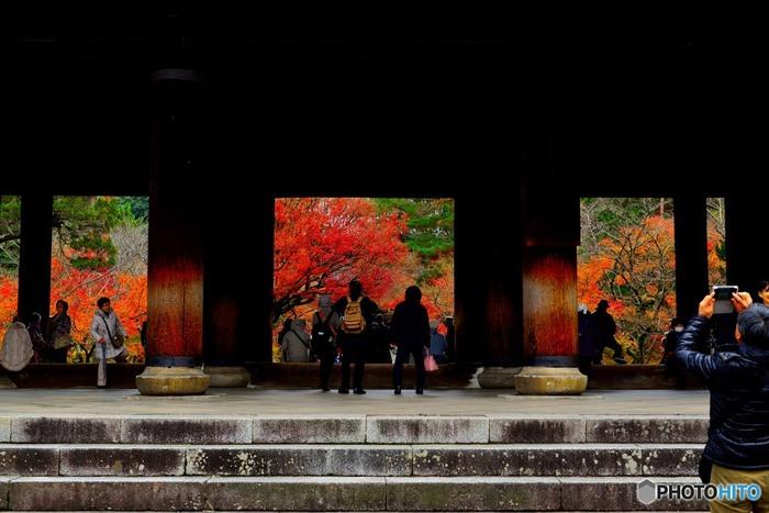 「南禅寺」は、春の桜、夏の青もみじ、秋の紅葉、雪景色も魅力的で、四季折々楽しめる寺院です。  見上げる程の大伽藍、古色を纏った建築物、池や白砂の庭園が、周囲の自然環境と溶け合って、独特の雰囲気、風情を生み出しているのが、「南禅寺」の最大の魅力です。【11月下旬の南禅寺「三門」】