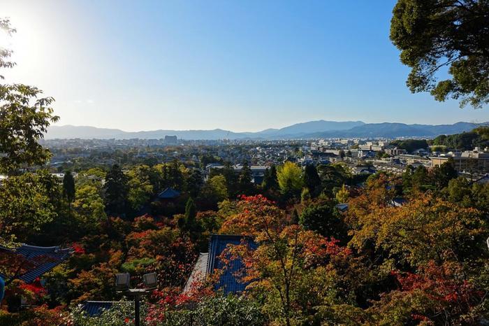 【11月初旬の永観堂の多宝塔からの眺め】