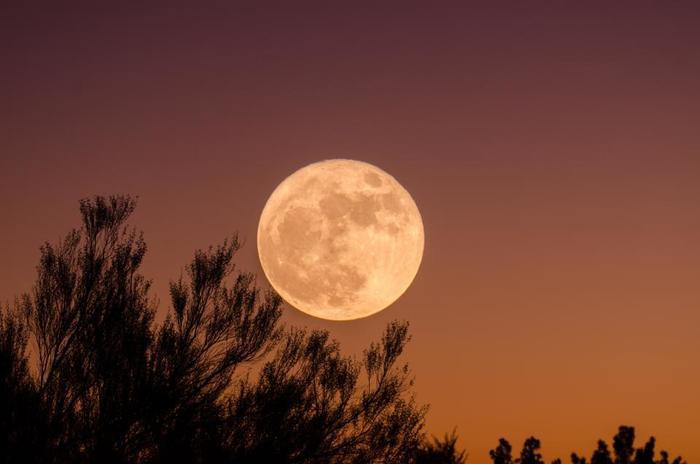 月のリズムとは新月から次の新月までの月の満ち欠けのサイクルのことです。女性の月経や肌の生まれ変わりとほぼ同じ29.5日周期であること、耳にされたこともあるのではないでしょうか。『月美容』では満ちるほどに栄養をたっぷりと吸収し、欠けるほどにデトックスされると言われています。 月美容とは「与える」「デトックスする」の2つのケアを繰り返していくだけのシンプルな美容法です。