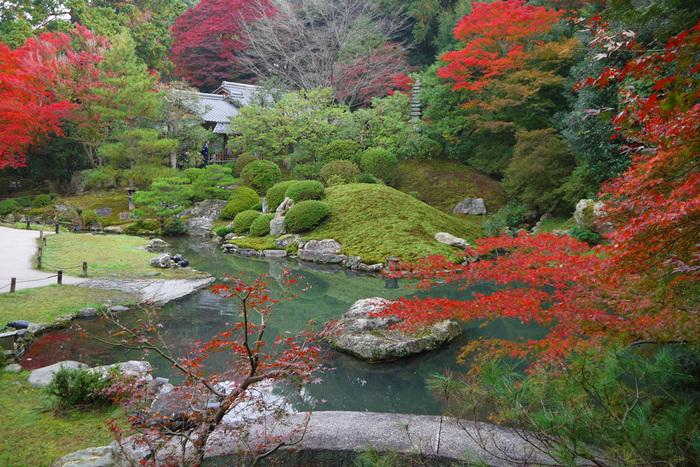 見所の一つである、「相阿弥の庭」は、「小御所」から茶室「好文亭」にかけて広がる、龍心池を中心に配した築山泉水庭です。室町時代に活躍した同朋衆の一人、相阿弥による意匠と伝わり、「相阿弥の庭」と呼ばれています。  【紅葉の頃の「相阿弥の庭」。築山の奥の建物は、茶室「好文亭」。池には、龍が沐浴しているかのような大石(画面中央)や半円形の反りの石橋(画面手前)、滝や築山が配置され、細やかな意匠が凝らされています。この庭は、池泉回遊式ですので、気の向くままに周り歩いてみましょう。】