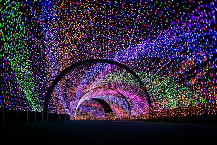 神奈川県の冬を彩る一大イベント、「よみうりランドジュエルイルミネーション」は、約550万球のLED電球が煌めく首都圏最大級のイルミネーションです。