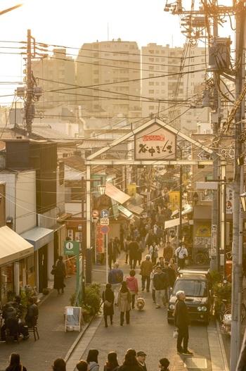 谷中銀座商店街を抜けたところにある「夕やけだんだん」という階段は、そこから商店街の方を見ると美しい夕焼けが望めることでその名がつきました。