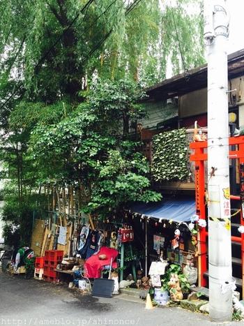 外観からも独自の雰囲気を放つ「ねんねこ家」は、オーナーの一軒家の一部を使ったお店です。根津駅から4分、坂の途中にあります。