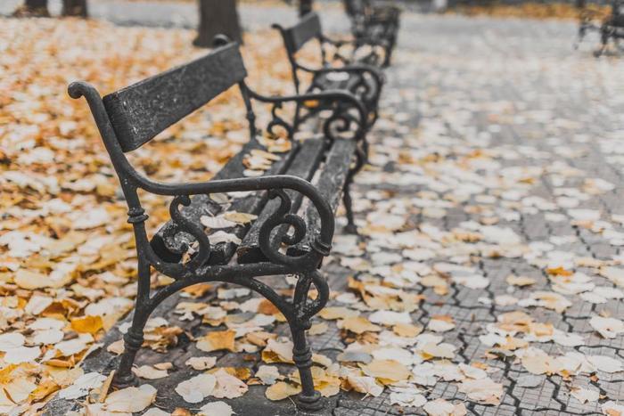 秋。空気は澄んで冷たくなってきます。ファッションも、暖かみと落ち着きが似合う季節ですね。 今回は、そんな秋にとっても似合う「黒×茶」の色づかいで、大人っぽいナチュラルコーデをご紹介します♪