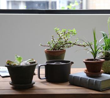 普段は屋外に出している植物も屋内に移動すると、置く場所に困ってしまいますよね。特に小さな鉢植えが多い時は一か所に集めて、立体的にディスプレイするのがおすすめ。窓際の日当たりの良い場所にシェルフを置いて、小さな鉢植えをコンパクトにまとめれば水やりも簡単!しかも、ショップのディスプレイみたいでとってもオシャレ。