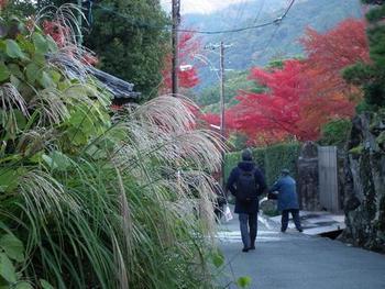 南禅寺へは、「蹴上駅」を出て「ねじりまんぼ」をくぐり抜け、そのまま直進し、道なりに進みます。 石組の垣根が続くこの道は、庭園「大寧軒(だいねいけん)」と、南禅寺界隈別荘群の一つ「何有荘(かいうそう)」を分かつ道。  【11月下旬の「ねじりまんぼ」から南禅寺境内へと向かう道。右手が「何有荘(かいうそう)」の垣根。左側に「大寧軒」の敷地が広がっています。  「何有荘」は、かつて、染色事業に功績を残し、日本初の映画興行を行った、稲畑産業の創設者・稲畑勝太郎の本邸でした。 近代を代表する庭師・七代小川治兵衛が作庭した日本庭園があることで良く知られていますが、最近ではクリスティーズの仲介で、オラクル社CEO・ラリー・エリクソンが落札したことで話題を呼びました。】