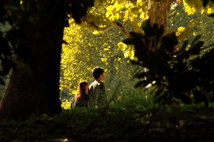 東京とは思えない、緑いっぱいの中を散歩してると、気持ちが満たされゆっくりとした時間が流れます。木々に囲まれながらのんびり過ごすと気持ちよさそう。