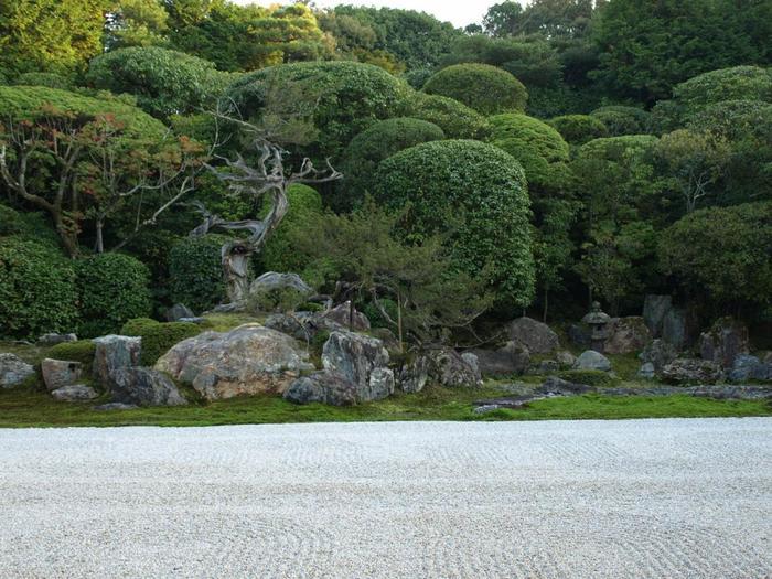 """遠州は、徳川家に仕えながら、数多くの建築や作庭、茶道指南役をも務めた才能溢れる人物です。遠州の庭は、斬新で粋。誰にも追随を許さない遠州ならではのスタイルがあり、今もなお新鮮味を失わず、魅力的です。ぜひ方丈に座して、ゆったりと鑑賞しましょう。【画像の左側に並ぶ石組が、海に潜ろうとしている亀を表した""""亀島""""。】"""