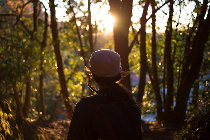 鎌倉北部をぐるりとめぐる全長約4キロメートルのハイキングコース「鎌倉アルプス」。天園ハイキングコースとも呼ばれ、自然を満喫できる登山道です。季節を問わず楽しめ、その季節ならではの風景が広がります。