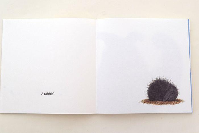 ふわふわもこもこの動物のイラストは、見ているだけで癒しになりますよ! 手触りを想像しながら、誰かと一緒に読みたい美しい絵本です。