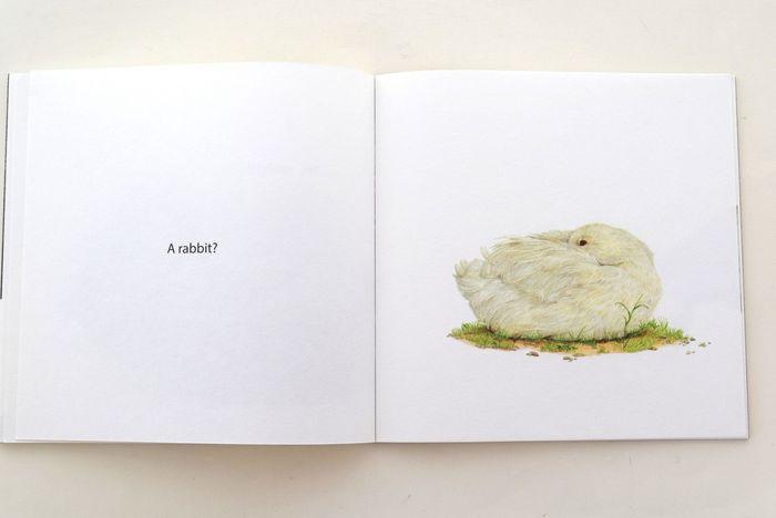 ページには「これはウサギですか?」と問いかける文と、ふわふわした生き物のイラストが載っています。ページをめくりながら、ウサギってどんなものだろう、と考えることで、物の個性を認識できる内容になっています。
