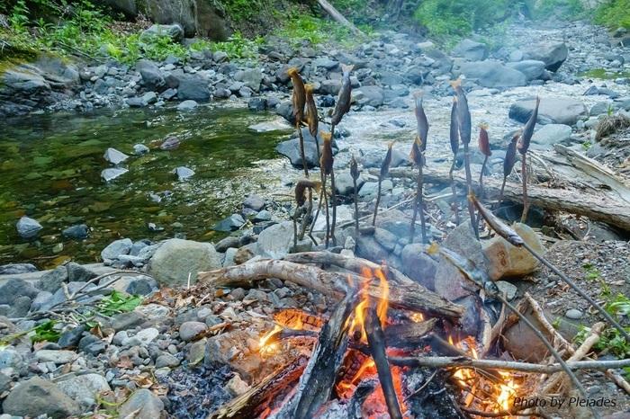 川辺でキャンプをするなら、渓流釣りと焚き火をいっしょに楽しまない手はありませんよね。すぐ食べる分は塩焼きで、大漁のときは、もう一工夫して薫製づくりにチャレンジするのも楽しそう。