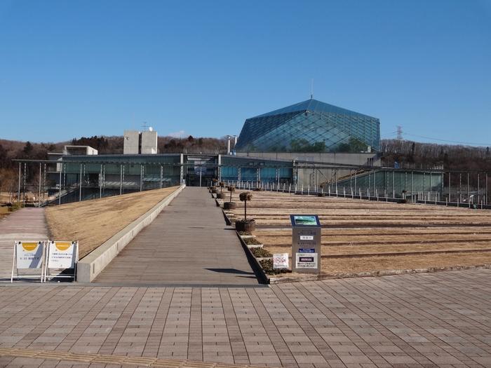 栃木県なかがわ水遊園は、淡水魚をテーマにした水族館。水族館は海の生物を展示しているところが多いですが、このなかがわ水遊園は川の生物を見ることができる珍しい水族館です。