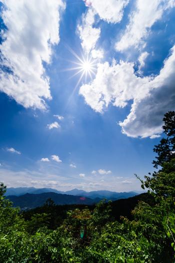 緑が濃くなる夏は、山頂からの眺めが格別です。夏季限定で「高尾山ビアマウント」というビアガーデンも開業します。ケーブルカーを降りてすぐの所にあるので、夏は、ハイキングでくる観光客だけでなく自然の中でのビールを楽しみくる観光客でも大賑わいです。