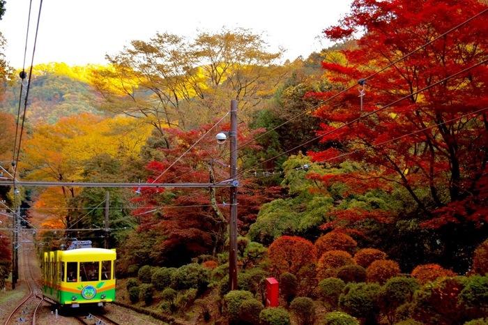 高尾山に行ったらまず体験したいのがケーブルカー!高尾山口駅から徒歩5分のところにある清滝駅から、高尾山駅を結んでいます。途中で31度18分という、ケーブルカーの線路では日本一の急勾配があります。