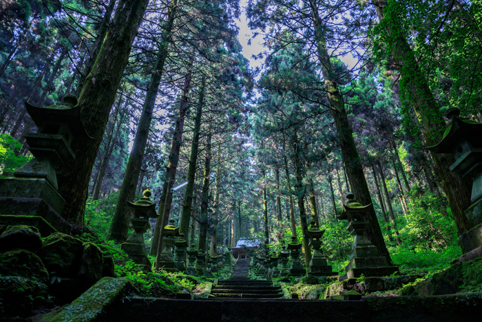 長い石段、苔むした石燈籠、高くそびえる樹々が続く上色見熊野座神社参道を歩いていると、異世界への誘導口をさ迷っているような錯覚を感じます。