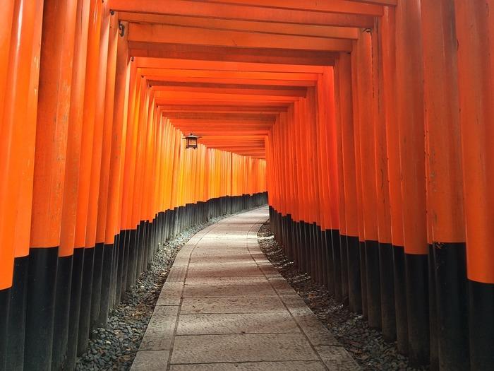 神社の鳥居をくぐった時のすがすがしい気持ち。神社巡りは、昔ながらの和の心が感じられるひとときです。