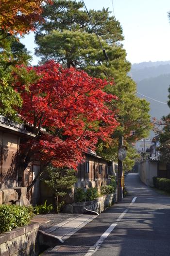 「南禅寺」周辺は、先述したように別荘群を中心とした、寺院と別荘、瀟洒な住宅が連なる閑静な地域です。  瓦屋根の白壁や生け垣、疎水が続く道を歩めば、この界隈ならではの、静謐な一時を楽しめます。南禅寺境外には、必見のスポットも数多くありますので、時間があるのなら周ってみましょう。【南禅寺界隈】