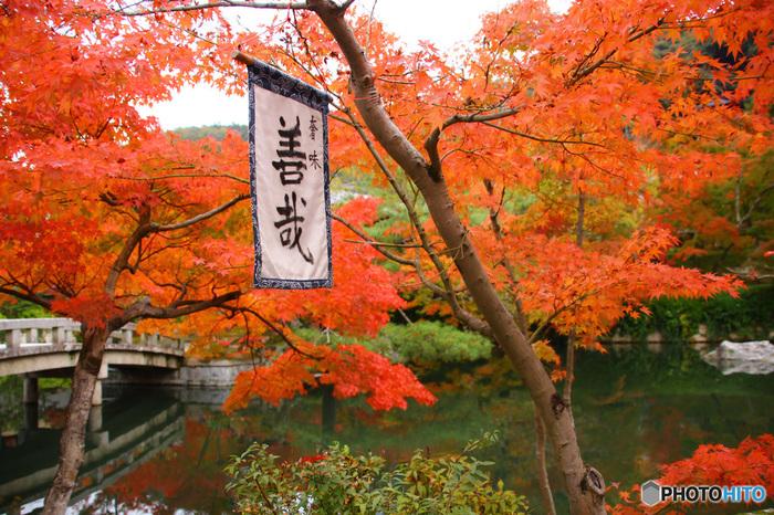 永観堂境内・放生池の畔には、景色を眺めながら甘味が頂ける、お休み処「みかえり茶屋」があります。広い境内を周り歩いたら、ここで一服致しましょう。