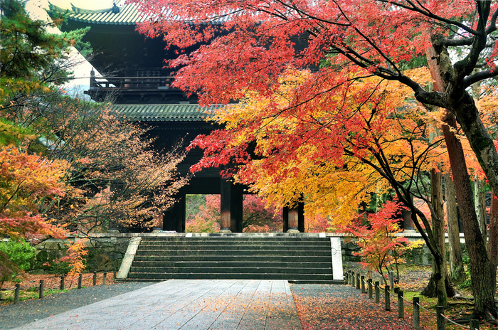 大きな三門で有名な南禅寺。日本の禅寺の中で最も高い格式を持つ有名なお寺も、紅葉に彩られ一層美しい季節に。
