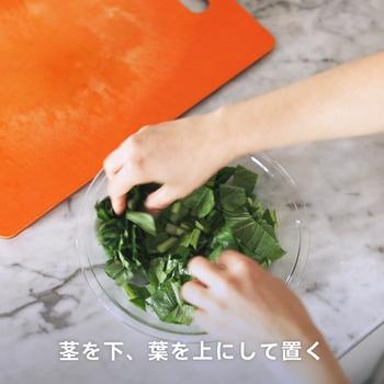 【明日なにつくる】夕飯の献立に迷ったら。パパッと2品作れちゃう!【主菜・副菜】簡単レシピ
