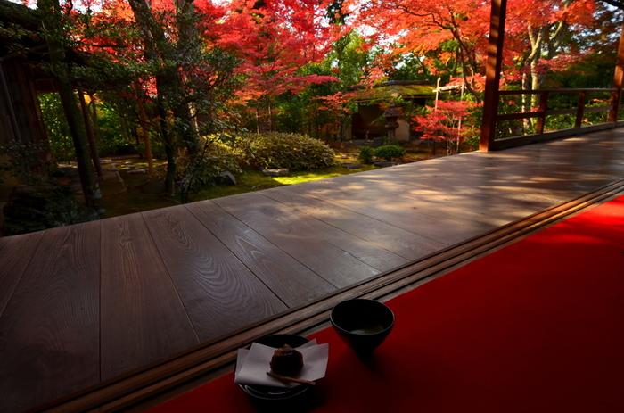 一年でほんの一瞬しか楽しめない紅葉。一瞬だからこそ、美しく私たちを魅了してくれますね。今年はちょっとのんびり紅葉とお抹茶を楽しみに、大人の京都旅に出かけてみませんか?