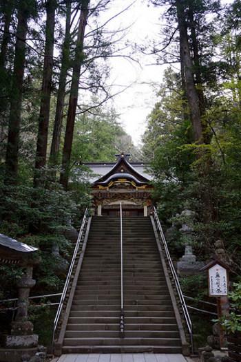 長瀞駅からまっすぐに伸びる道を進むと見えてくるのが宝登山神社。世界的に有名なガイドブック「ミシュラン・グリーンガイド・ジャポン」で埼玉県初の一つ星を獲得した神社でもあるんですよ。  学問の神さまや衣食住を司る神さまなどが祭られていて、霊験あらたか。ゆっくりと歩きながら厳かな空気に触れてみませんか?