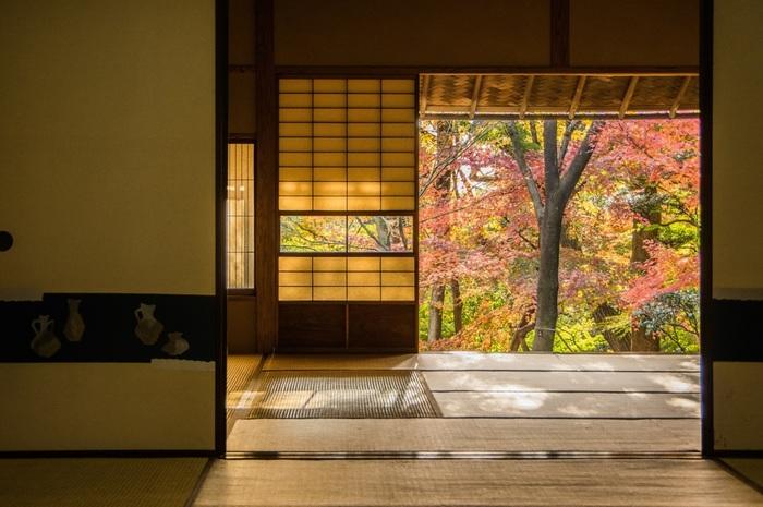 「杉の間」から見える庭園は、とても心が落ち着きますね。秋には美しい紅葉も。縁側に座ってずっと眺めていたくなります。