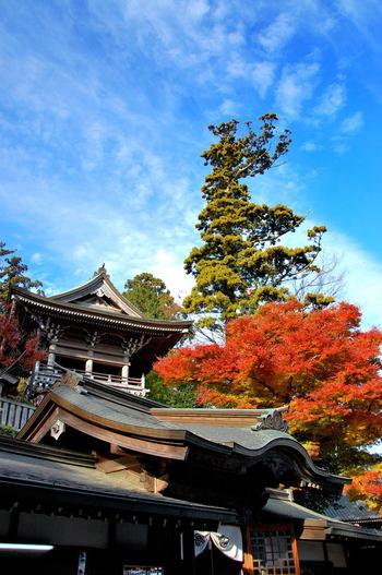 紅葉が美しい秋は、特に多くの人で賑わう季節です。「高尾山もみじまつり」や、伝統芸能、音楽演奏など、イベントも多く開催されます。
